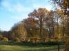 2010_10_herbst_und_blumen_im_schlosspark_026
