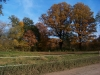 2011_11_05_schlosspark_009