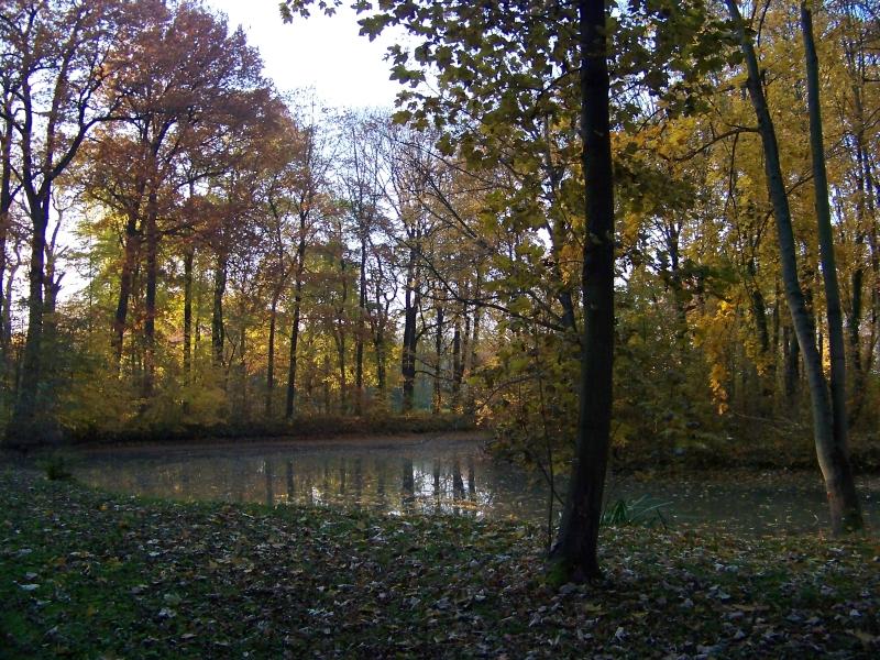 2010_10_herbst_und_blumen_im_schlosspark_018