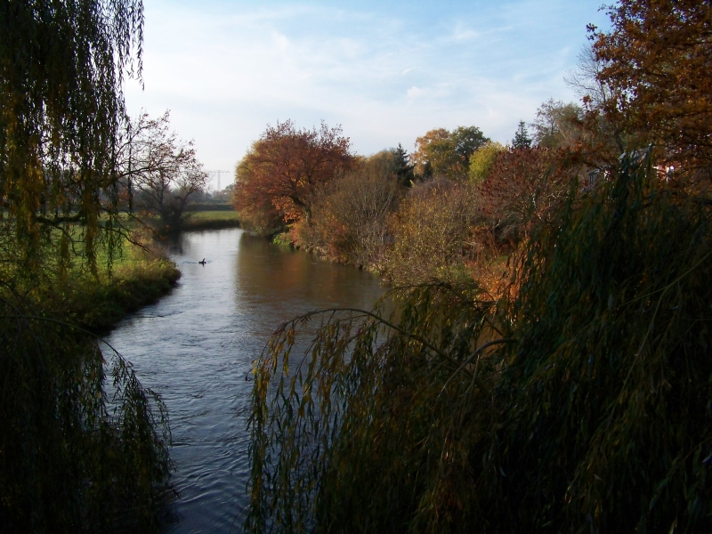 2011_11_05_schlosspark_004