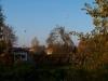 2010_10_herbst_und_blumen_im_schlosspark_024