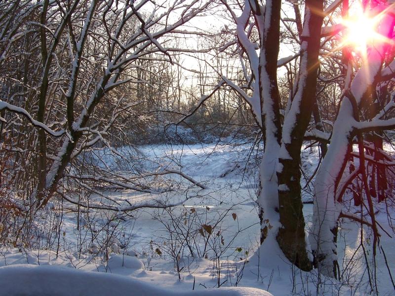 2010_12_04_schlosspark_im_schnee_012